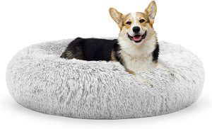 Coussin : Friends Forever Donut Pet Bed